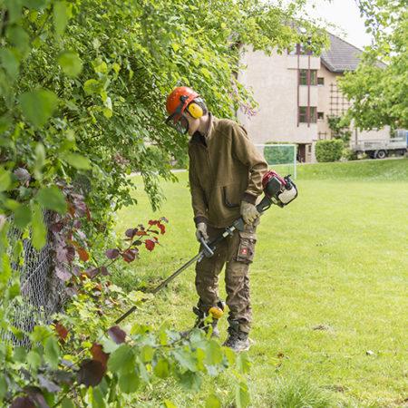 AuftragArbeit unsere Gartenhelfer pflanzen und pflegen Bäume, Sträucher und Blumenbeete.